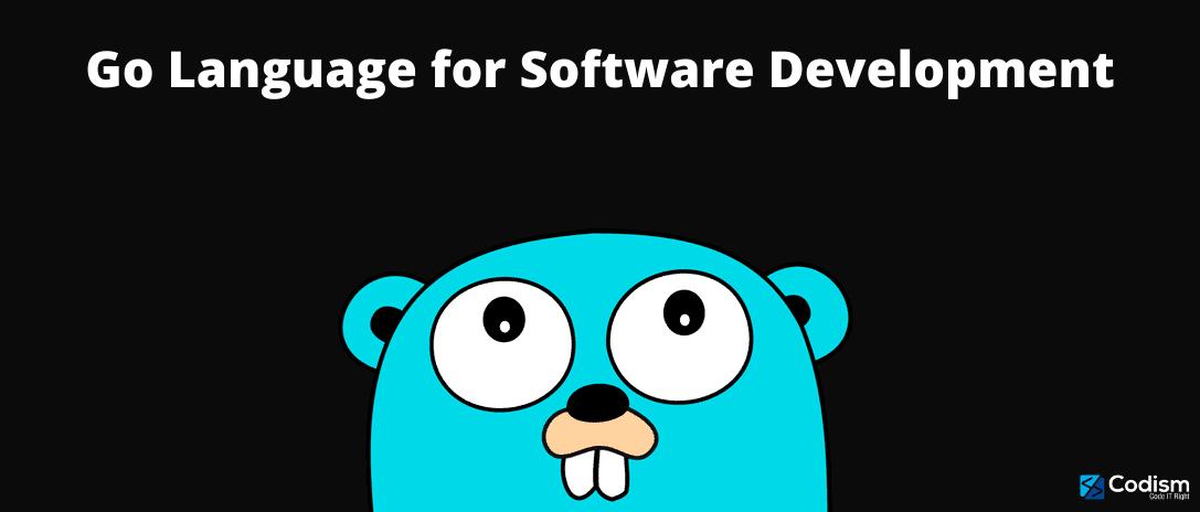 Go Language for Software Development