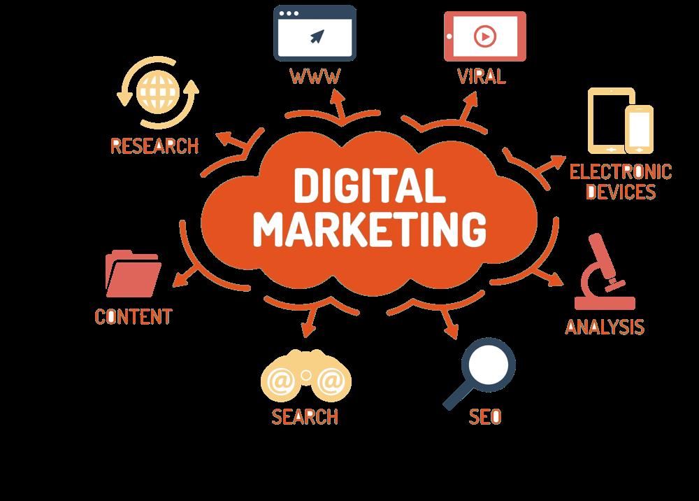 benefited Digital Marketing codism