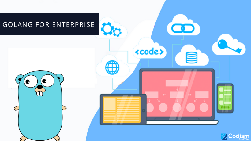 golang for enterprise