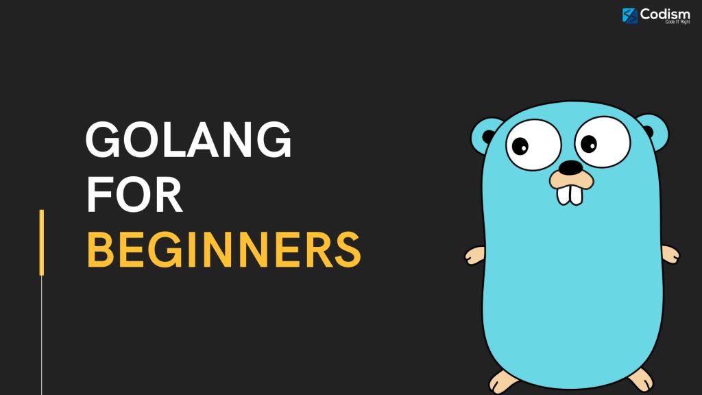 golang for beginners
