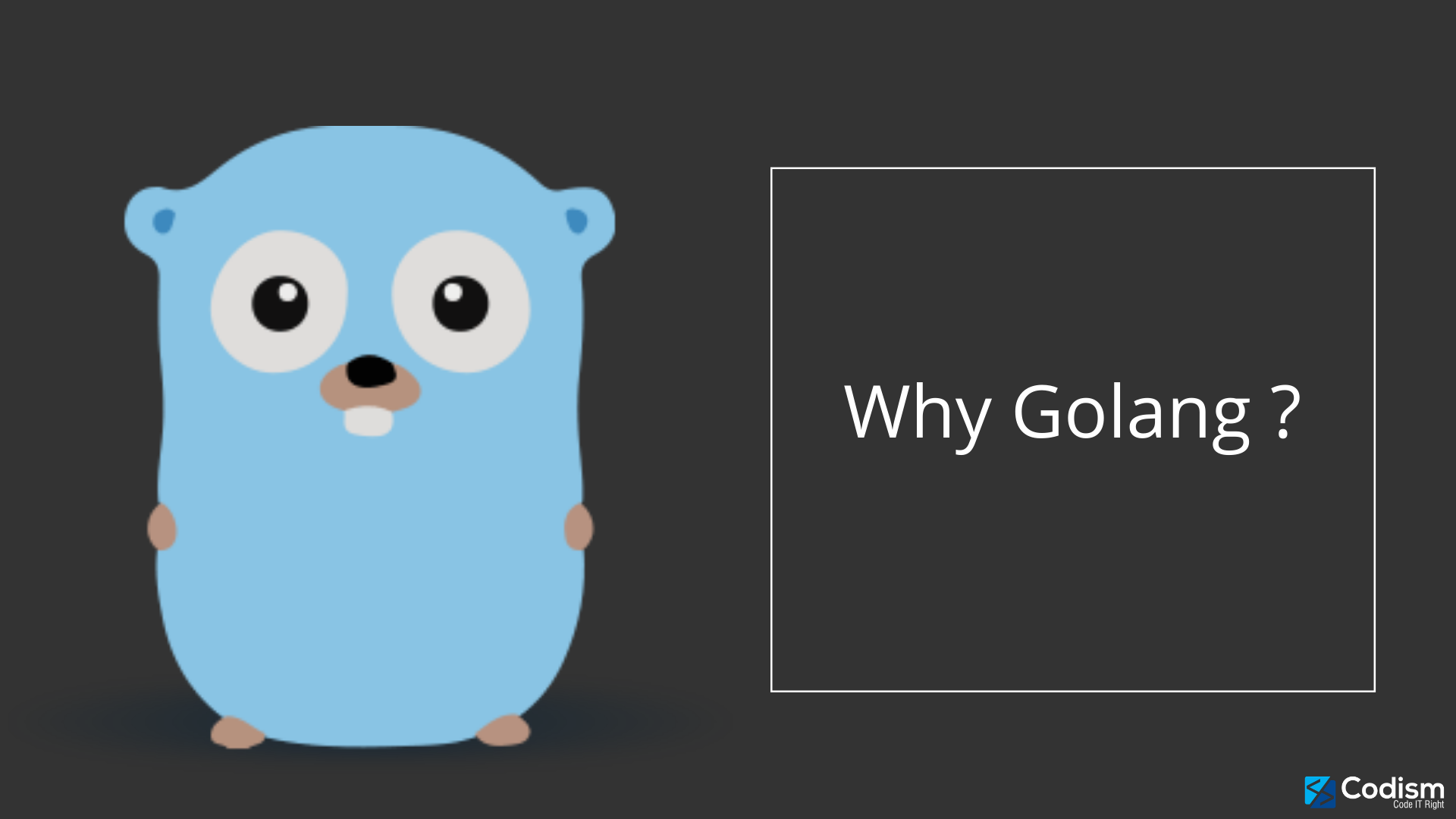 why golang?